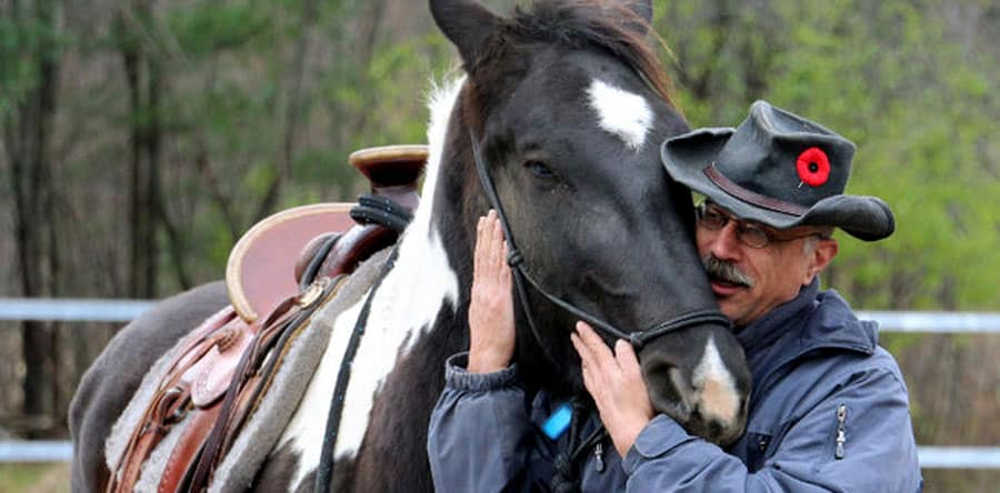 Soldier's PTSD Harnessed by Horses Image for Blog Post